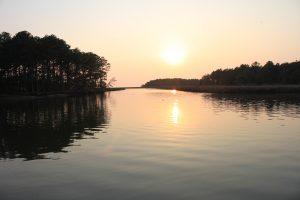 Pocomoke River - Nassawango Cree