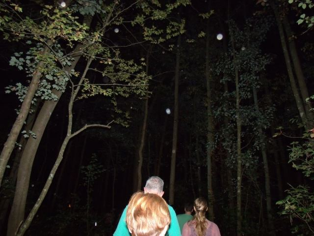 Guests walk into the Pocomoke Forest under a full moon